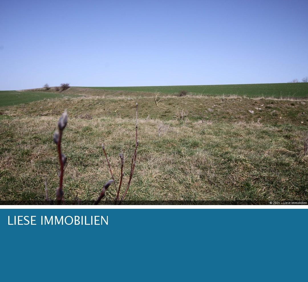 Foto - Unverbauter Blick Richtung No